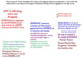 sm-organization.png